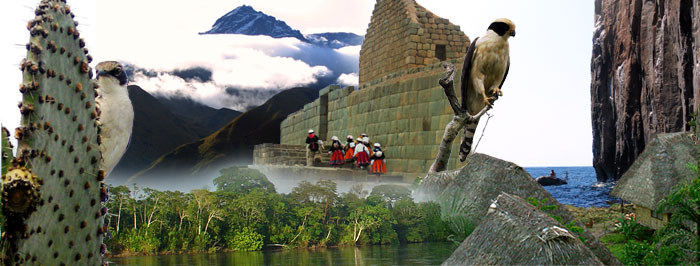 Ecuador Nature Expeditions
